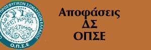 apofaseis-ds
